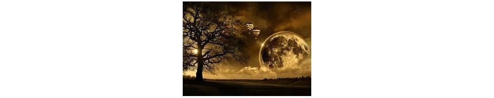 Sny Książki- Ezoteryka Sklep Internetowy